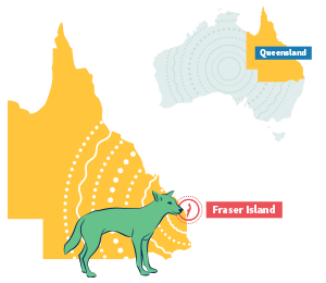 Fraser island australia location map