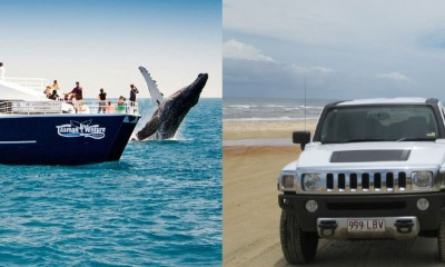 Fraser Island Hummer & Whales Package